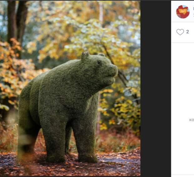 Фото дня: затаившийся медведь