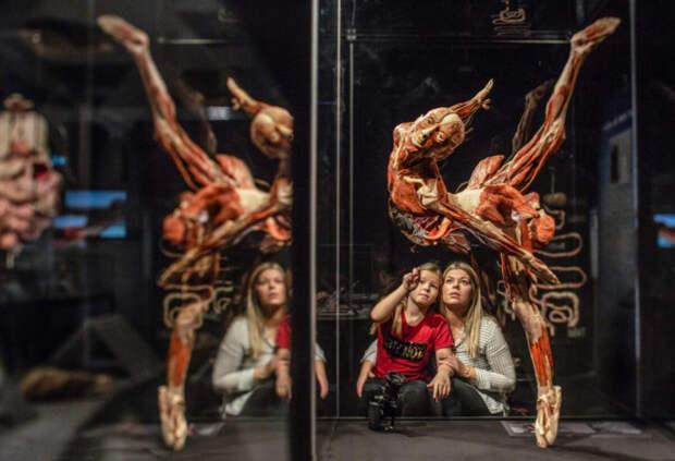 Сатанинское шоу Гюнтера фон Хагенса в Москве: диверсия против нравственности и психики
