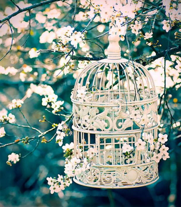 flowers-in-bird-cages-ideas1-2-4 (500x570, 391Kb)