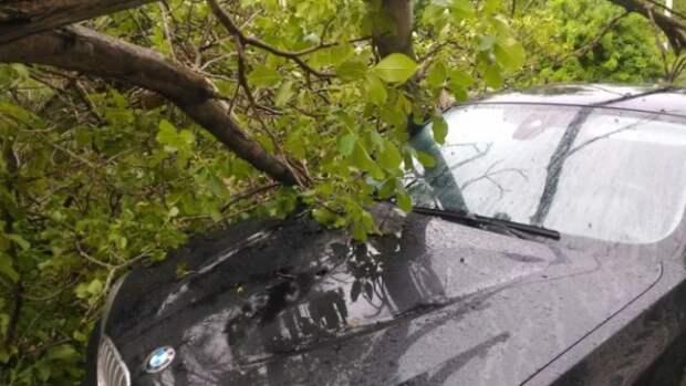 В Севастополе из-за непогоды пострадали автомобили (ФОТО)