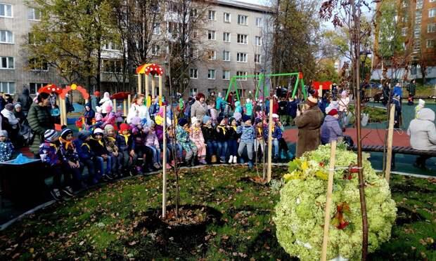 «Рябиновый сквер» открыли в Ижевске
