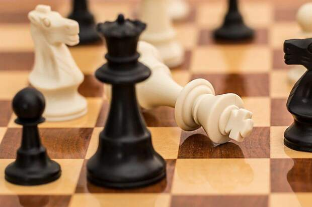 Юные шахматисты из Сокола собрали урожай наград на окружных соревнованиях