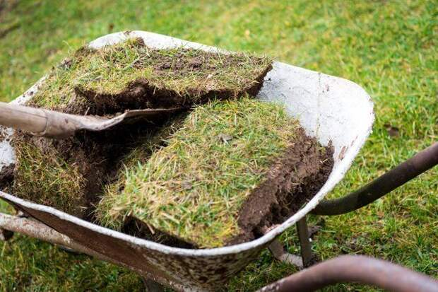 Wheelbarrow full with old turf