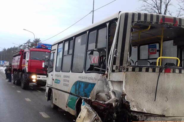 Два автобуса с пассажирами столкнулись в Тамбовской области