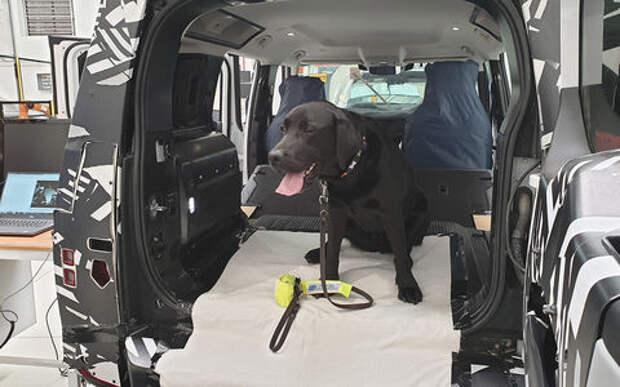 Jaguar Land Rover сконструировал лапу собаки