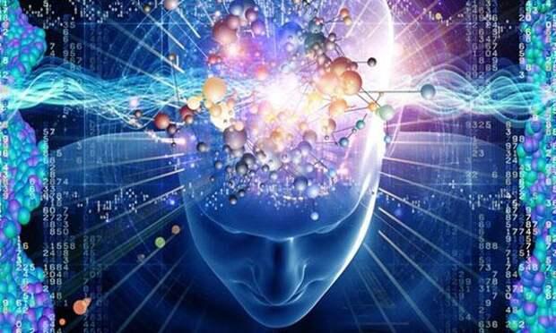 Мозг и информация: «азартный» эксперимент калифорнийских ученых