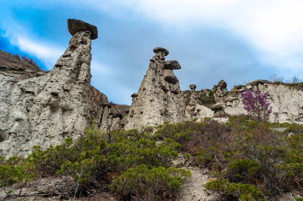 Каменные грибы!