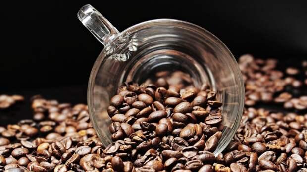 Мясников рассказал, при каких болезнях полезно пить кофе
