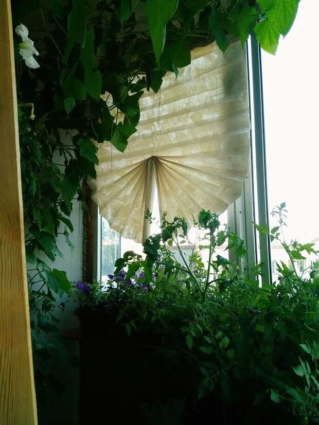 Декор балкона/лоджии. Шторы из обоев.