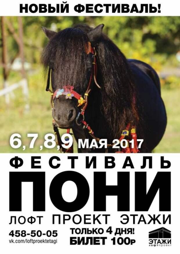 В Санкт-Петербурге начался фестиваль пони