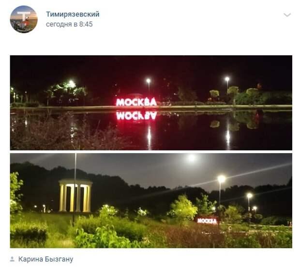 Фото дня: ночной парк «Дубки»