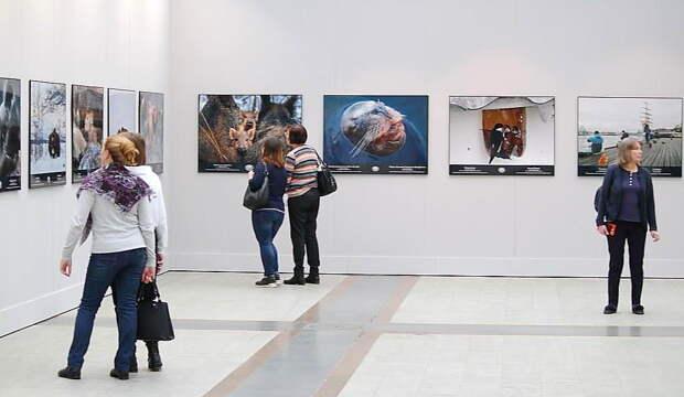 VIII Общероссийский фестиваль природы «Первозданная Россия» станет первым масштабным культурным мероприятием после отмены карантина