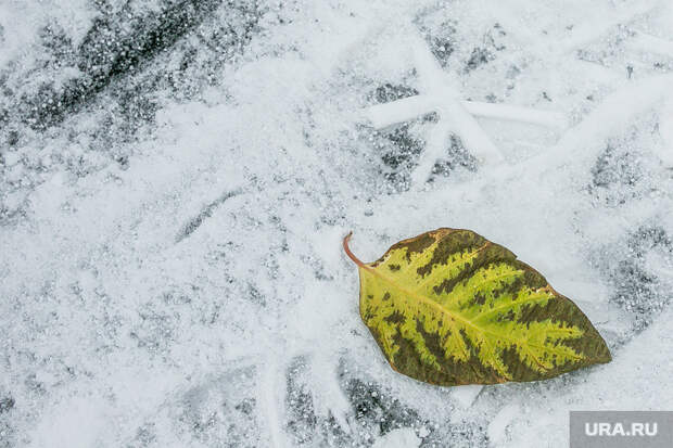 ВСвердловскую область идет резкое похолодание