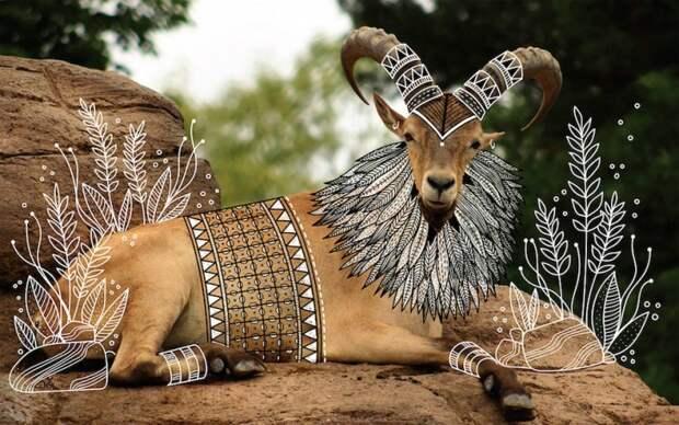 Иллюстрации в индейском стиле