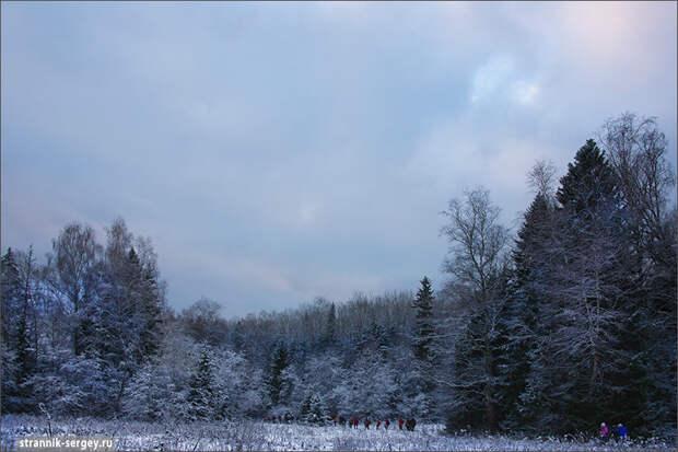 Радонеж - леса