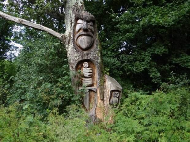 Проезжая на велосипеде по лесу, увидел эту резьбу по дереву