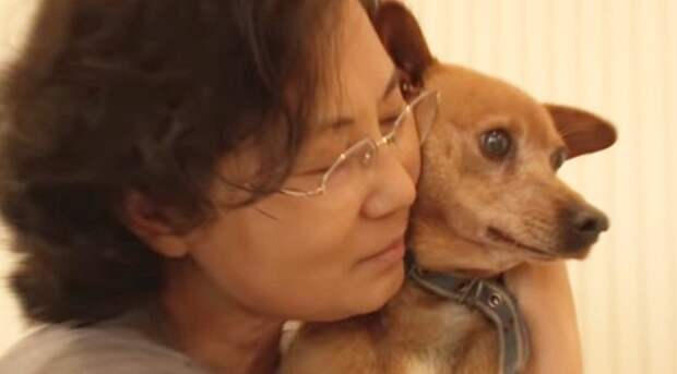 Собака с хозяйкой
