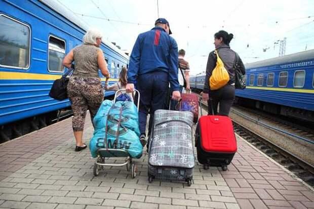 Неожиданно: Эстония отказалась от украинских заробитчан из-за русского языка (+ВИДЕО) | Русская весна