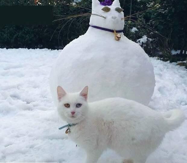 Абсолютные двойники! ТОП-8 самых забавных снеговиков, сделанных хозяевами для своих питомцев!