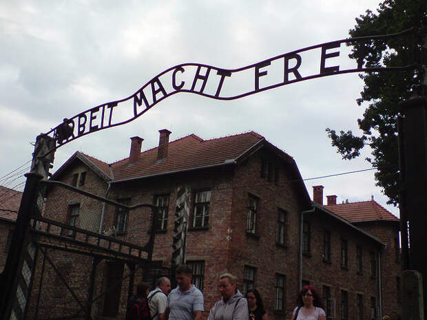 Швейцарский депутат сравнил жертв Холокоста со свиньями | Фото: Karl Baron/Flickr