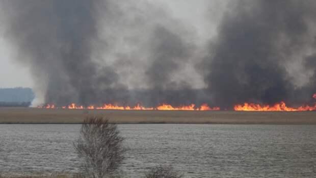 Ландшафтный пожар уничтожил 2,5 га в Кирзинском заказнике