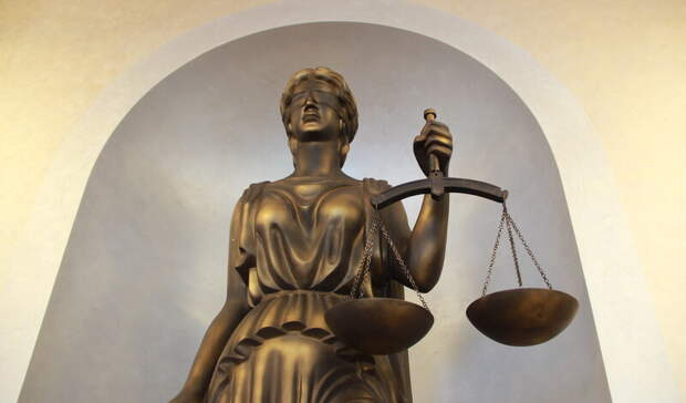 Тюменка признала вину в жестоком обращении с щенком на улице Харьковской