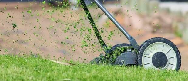 Сотрудники «Жилищника» покосили газон на Фестивальной