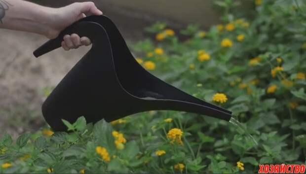 Яичная скорлупа – отличное удобрение для комнатных и садовых цветов