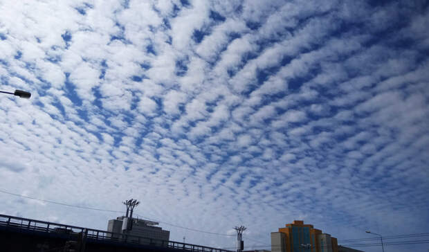 Стало известно, какая погода ждет петрозаводчан вначале недели
