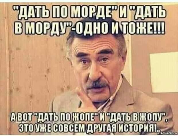 Продает на базаре молдованин мед. Ну не идет у него торговля и все тут!...