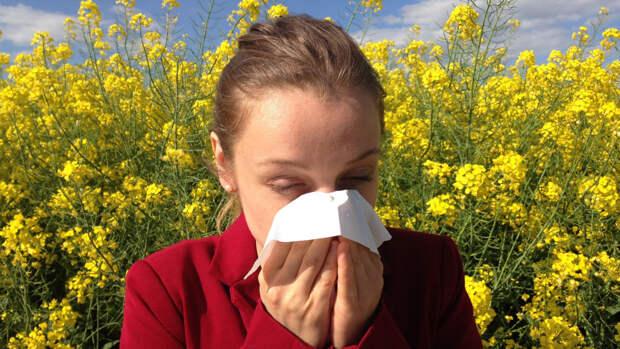 Пульмонолог Чучалин дал советы, как избежать приступа бронхиальной астмы