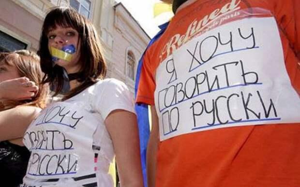 Украинский — язык меньшинства: большинство жителей Украины говорит по-русски