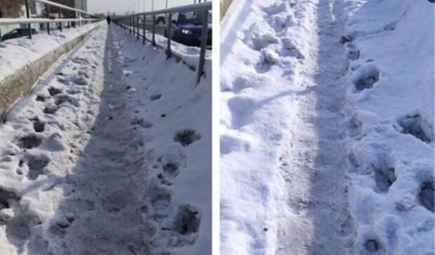 В Оренбурге узкий тротуар на ул. Уральская стал большой проблемой пешеходов