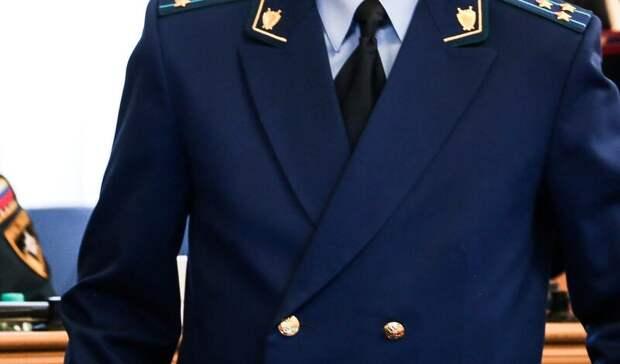 Шесть уголовных дел заведены в Тюменской области из-за пожаров в лесах