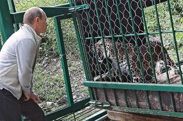 В 2009 году Владимир Путин посетил  Сочинский национальный парк недалеко от Красной поляны