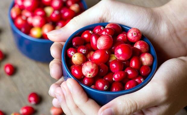 5 овощей и ягод, особенно полезных в ноябре. Выбираем виды, в которых даже несмотря на хранение остаются все витамины
