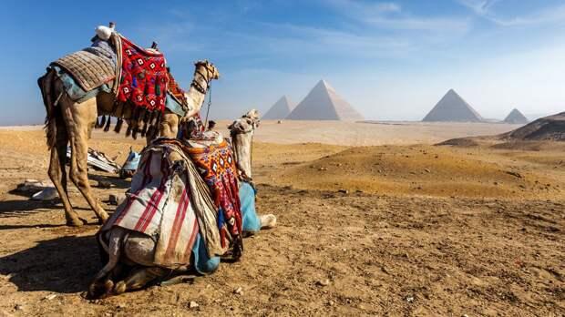 Россия возобновит авиасообщение с Египтом с июля. Сколько стоят туры туда и какие ограничения по ковиду