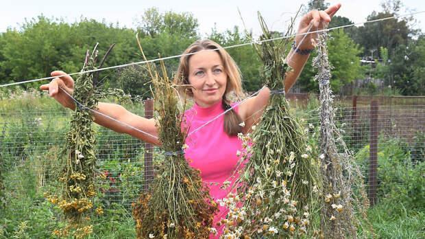 В Крапивне ценят и другие травы, которые обязательно добавляют в чай