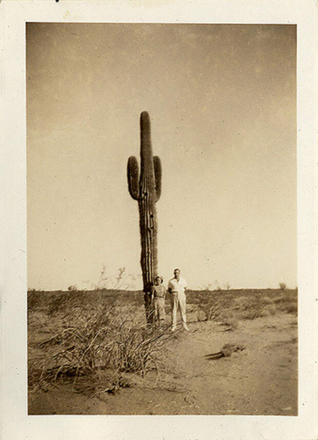 Местный пейзаж разбавляет одинокий кактус и семейная пара.