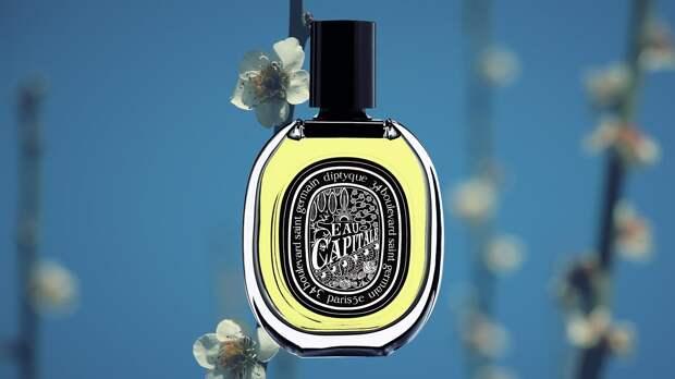 diptyque-eau-capitale-fragrance-review