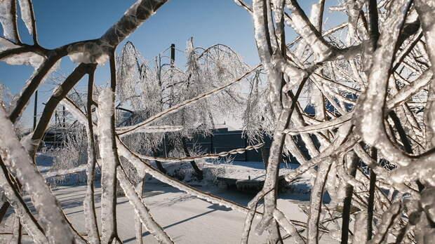 Ростовчанам рассказали, когда закончатся заморозки итуман