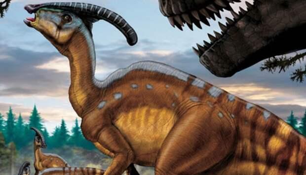 Череп хохлатого динозавра подсказал ученым предназначение его гребня