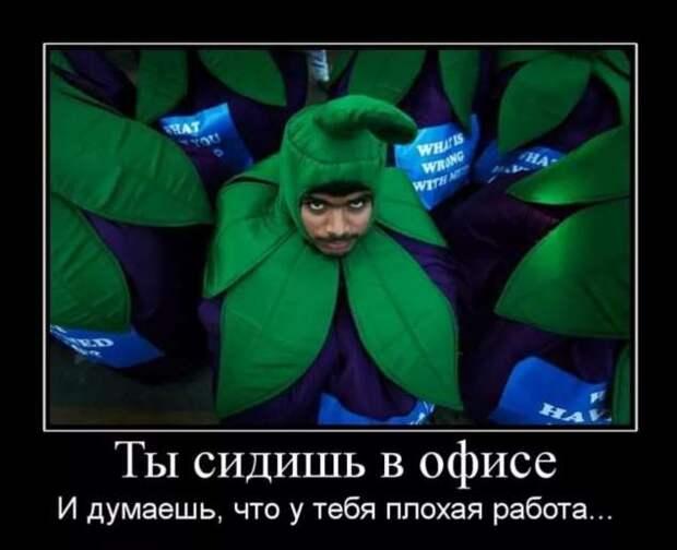 Смешные комментарии. Подборка chert-poberi-kom-chert-poberi-kom-54490317082020-17 картинка chert-poberi-kom-54490317082020-17