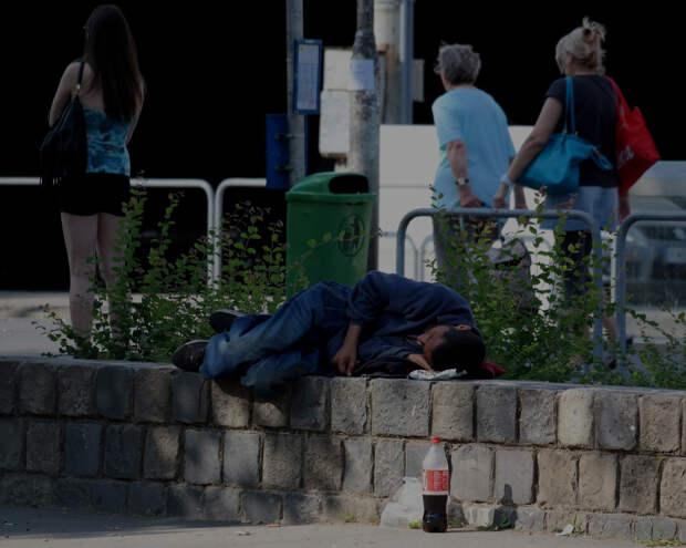 Для проблемы бездомных в Севастополе придумали модульное решение