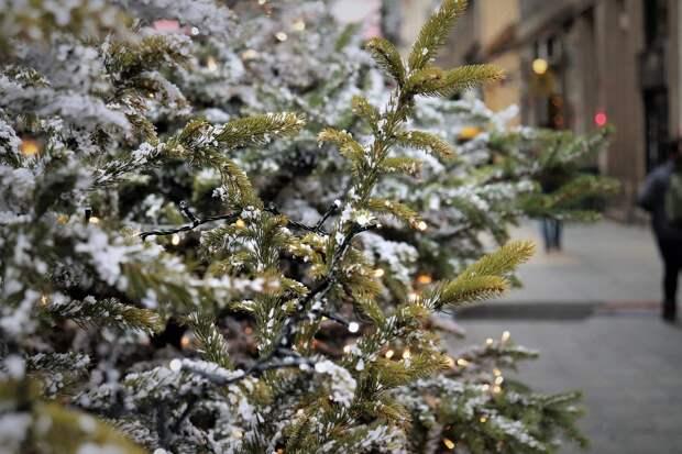 В Москве из-за коронавируса отменили елки и фестиваль «Путешествие в Рождество»