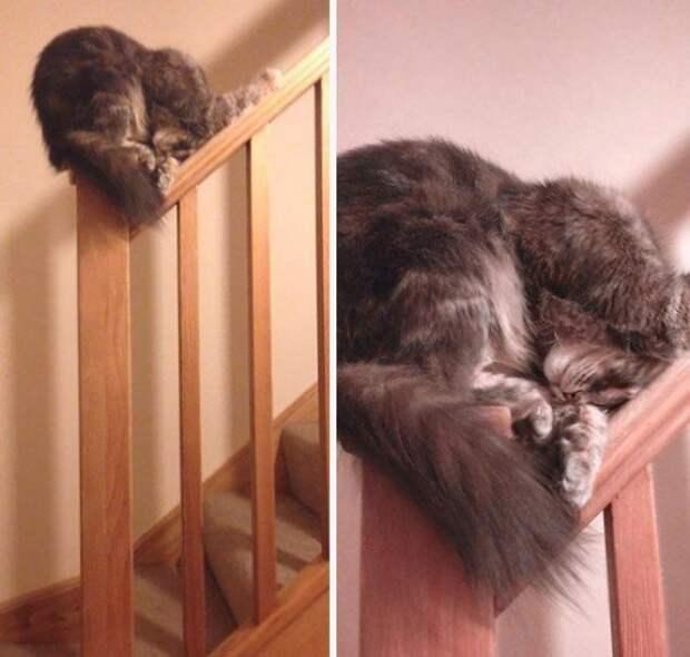 Так вообще спать законно?