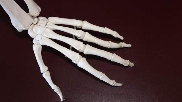 Ампутированную поошибке руку ребенка вРостовской области оценили в1,5млн рублей