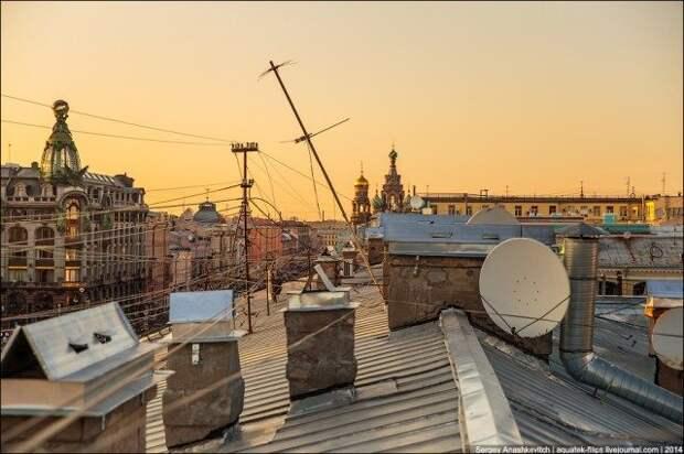 Прекрасный мир питерских крыш