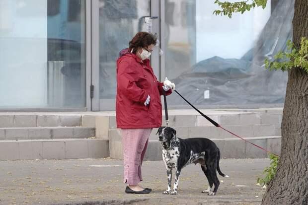 Всех россиян обяжут надевать маски в общественных местах