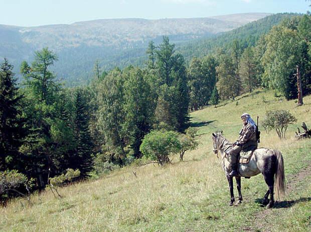 Правила конных охот